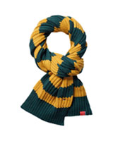 THD_FW_13_Elliston-Striped-Scarf-2_39L